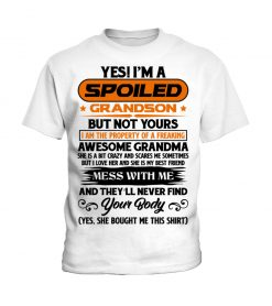 tg2060688-spoiled-grandson-but-not-yours